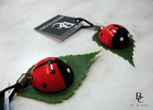 1421686230_ladybugs.jpg