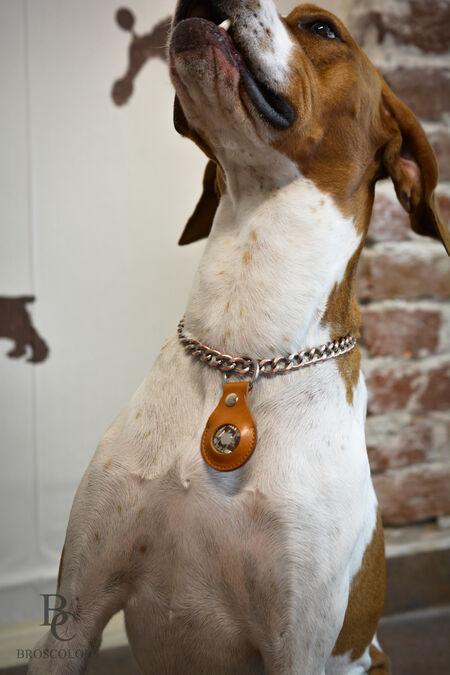 калъф за AirTag куче