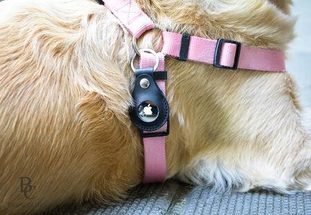AirTag за каишка на куче